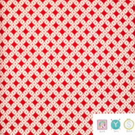 Red Bias Check Fabric - Hop, Skip and a Jump by American Jane for Moda Fabric